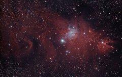 Nébuleuse du Cône et NGC2264 RDubuc.jpg